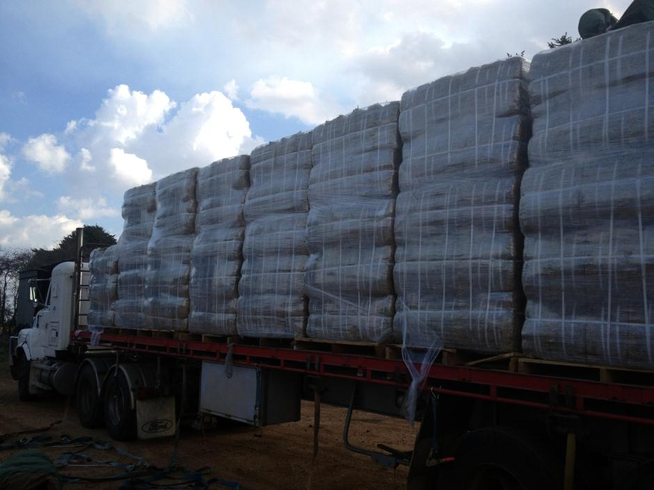 Lucerne Hay Compact Bale 1