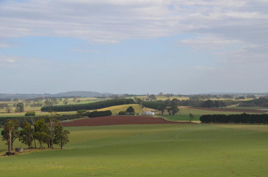 lucerne farm